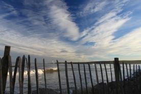 Fence + sea